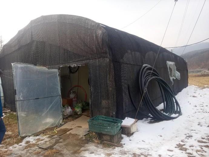 경기도 한 농가의 비닐하우스 구조 숙소. 사진=이주노동단체